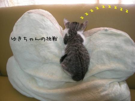 2007.10.14.7.jpg