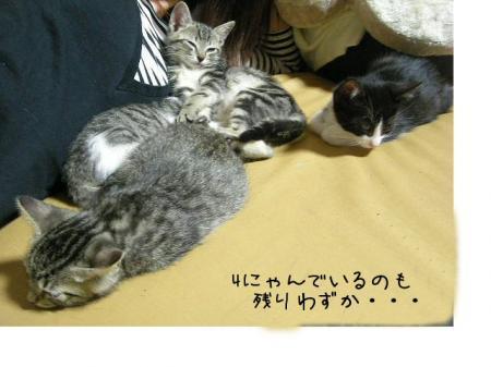 2007.10.16.16.jpg