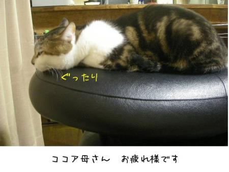 2007.10.16.18.jpg