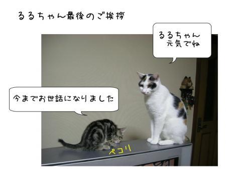 2007.10.16.9.jpg
