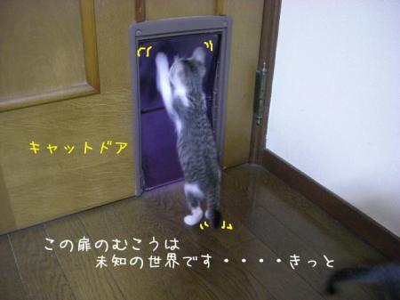 2007.10.18.3.jpg