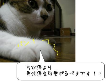 2007.10.2.10.jpg