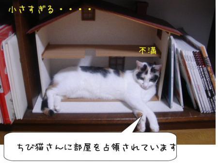 2007.10.2.12.jpg