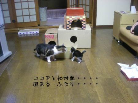 2007.10.2.16.jpg