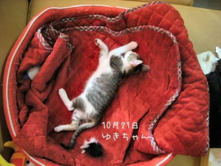 2007.10.21.1.jpg