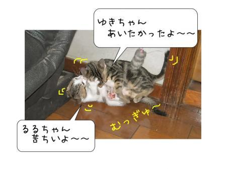 2007.10.28.3.jpg