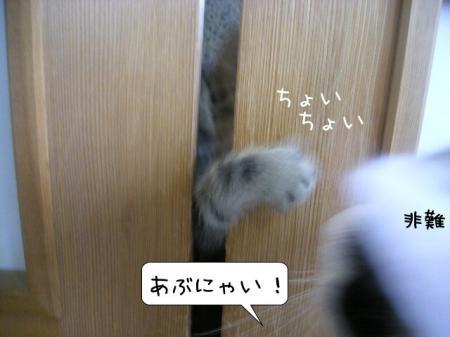 2007.10.4.8.jpg