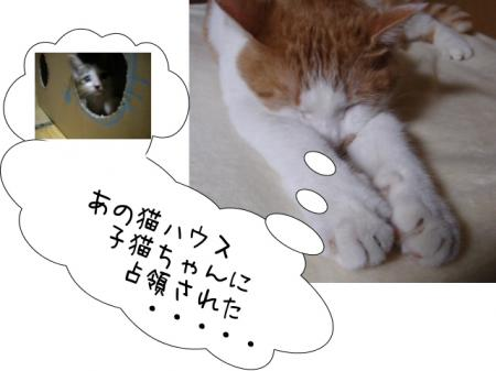 2007.10.8.13.jpg