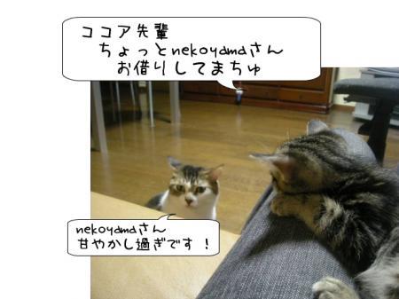 2007.10.8.5.jpg