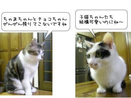2007.10.8.9.jpg