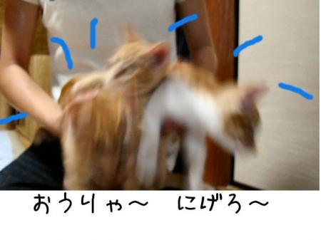 2007.7.1.12.jpg
