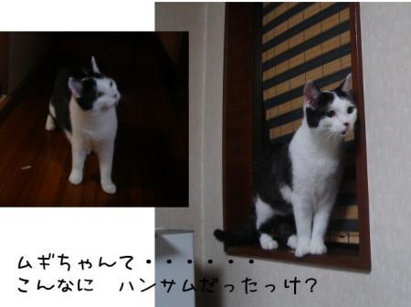 2007.7.1.8.jpg