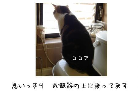 2007.8.24.1.jpg