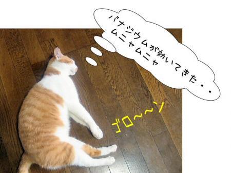 2007.9.1.9.jpg