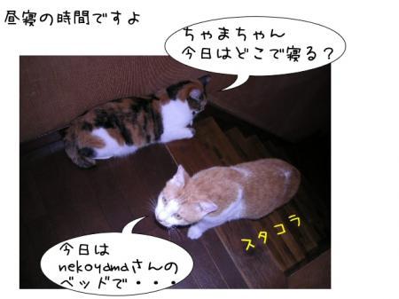 2007.9.10.7.jpg