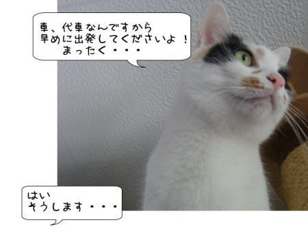 2007.9.11.10.jpg