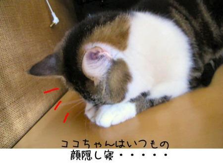 2007.9.11.7.jpg