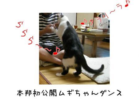 2007.9.13.18.jpg