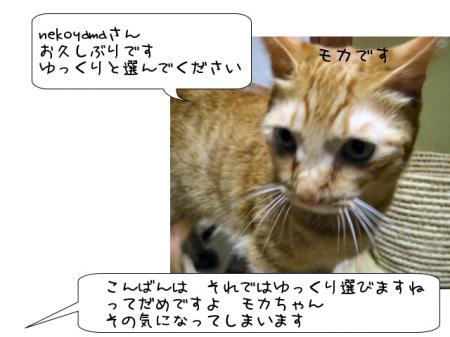 2007.9.13.1.jpg