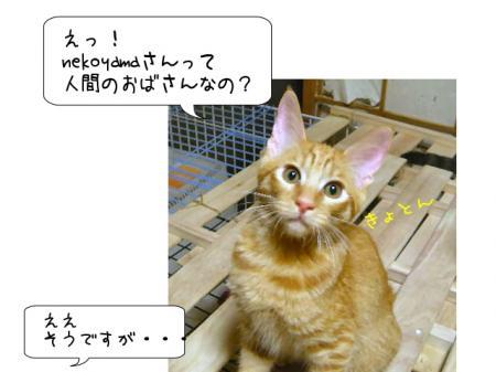 2007.9.13.2.jpg