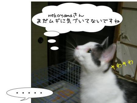2007.9.13.5.jpg