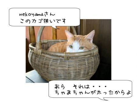 2007.9.15.1.jpg