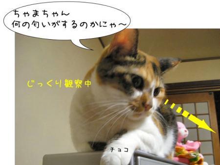 2007.9.15.5.jpg