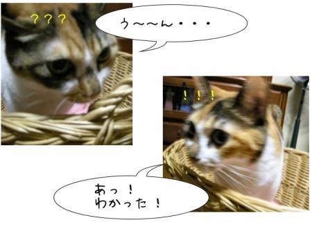 2007.9.15.7.jpg