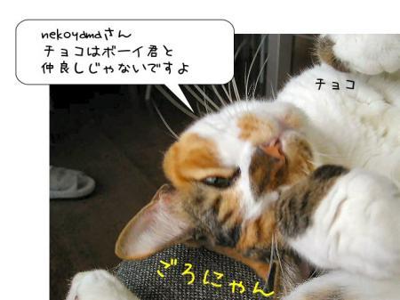 2007.9.16.3.jpg