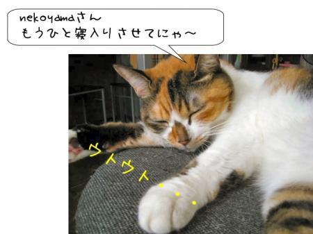 2007.9.16.5.jpg