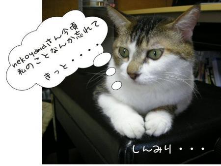 2007.9.18.10.jpg