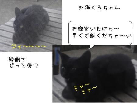 2007.9.2.5.jpg