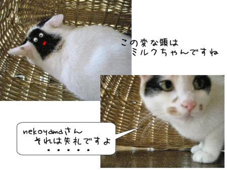 2007.9.21.2.jpg