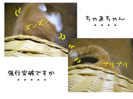 2007.9.21.5.jpg
