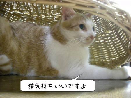 2007.9.21.7.jpg