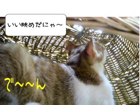 2007.9.21.8.jpg