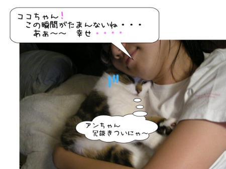 2007.9.22.2.jpg