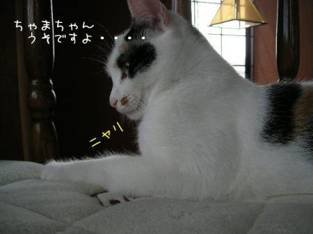 2007.9.24.12.jpg
