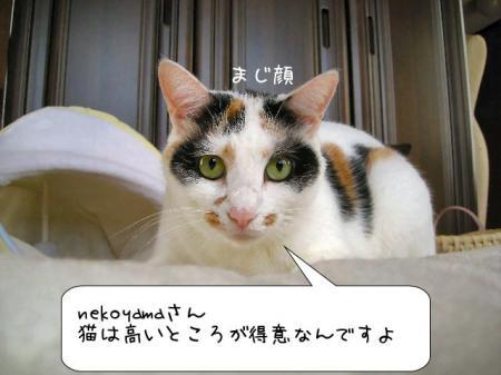 2007.9.24.4.jpg
