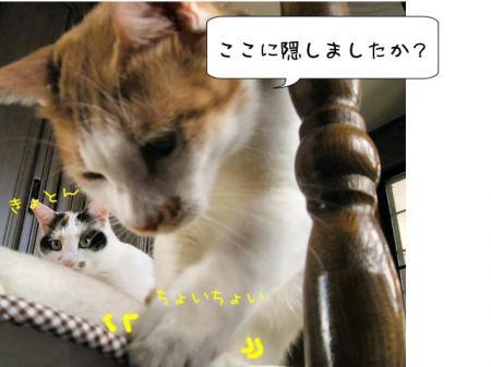2007.9.24.8.jpg