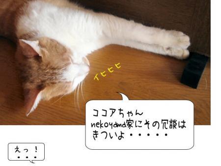 2007.9.28.7.jpg