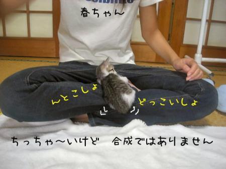 2007.9.29.12.jpg
