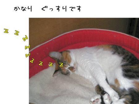2007.9.7.3.jpg