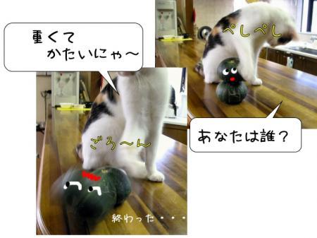 2007.9.8.7.jpg