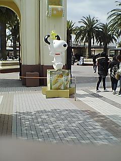 070319_1145~03.jpg