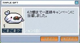 WS000899.jpg