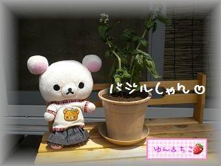 ちこちゃんの観察日記2011★9★-4