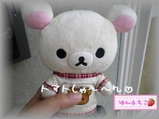 ちこちゃんの観察日記2011★10★赤くなってましゅね-1