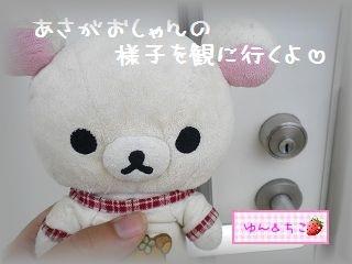 ちこちゃんのあさがお観察日記★5★急成長~♪-1
