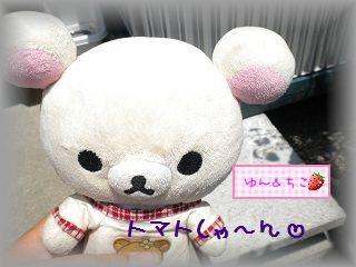 ちこちゃんの観察日記2011★13★明日は最初の収穫でしゅ♪-1